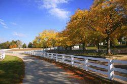 Kentucky Horse Farm with Beautiful White Fences